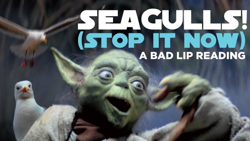 Yoda kontra... mewy! (źródło: youtube.com/screenshot)