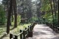 JuraPark Solec - park dinozaurów - wspaniałe miejsce dla dzieci -