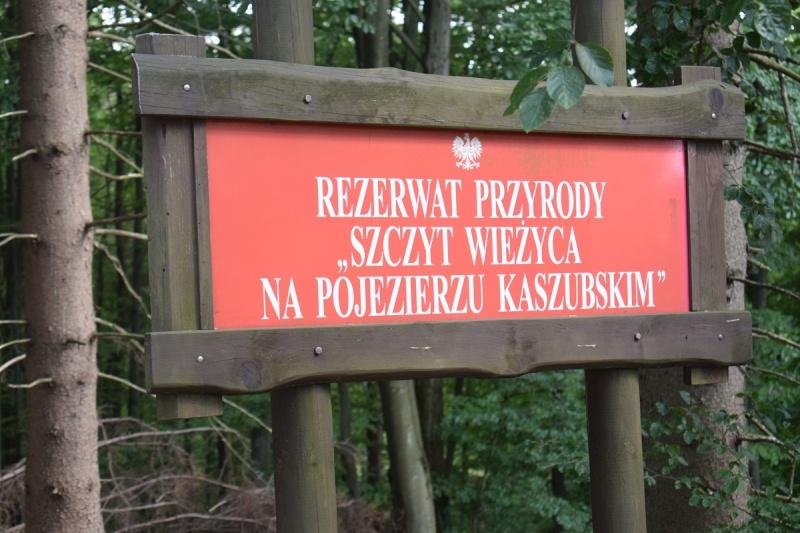 Szymbark - rezerwat (fot. PJ)