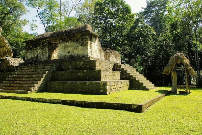 Ceibal w Gwatemali