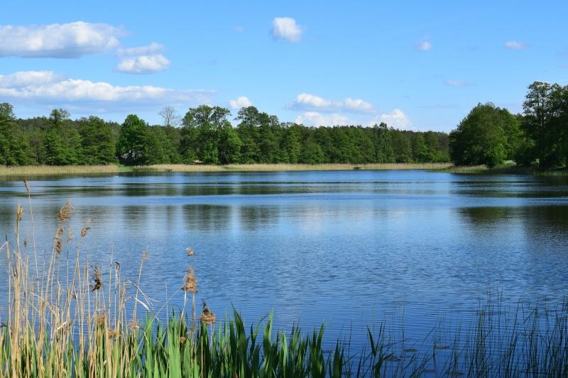 Jezioro Czarne (fot. PJ)