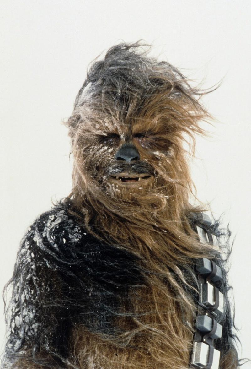 """Chewbacca w """"Imperium Kontratakuje"""" (źródło: materiały prasowe)"""