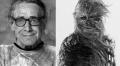 """Peter """"Chewie"""" Mayhew w odległej galaktyce... - Peter Mayhew;Chewbacca;Wookie;Star Wars;Gwiezdne Wojny;Nowa Nadzieja;rola;postać;ikoniczna;śmierć;wysoki;aktor;saga;włochaty;zmarł"""