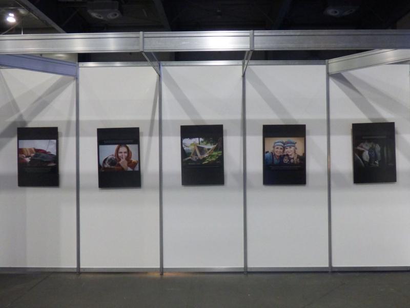 Pyrkon 2019 - A jeśli ciekawią Was spotkania Wikingów, na miejscu były cudowne zdjęcia wraz  z opisami (fot. Małgosia Morawska)