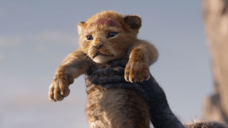 """Kadr z filmu """"Król Lew"""" (źródło: materiały prasowe)"""