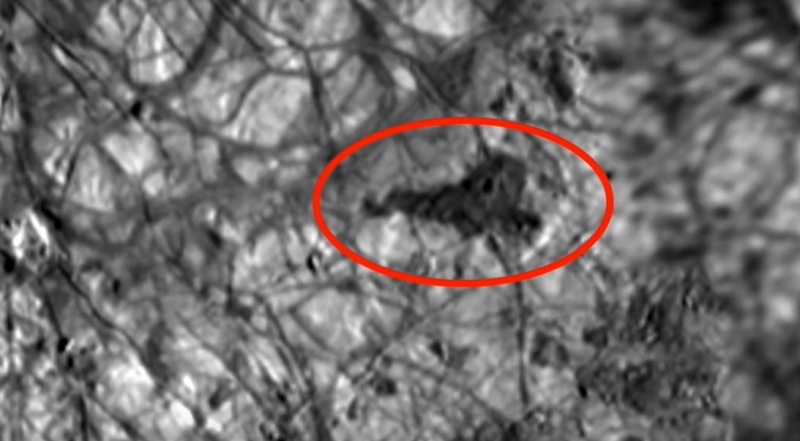 Tajemnicza czarna plama na zdjęciu NASA (źródło: youtube.com)