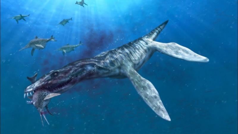 Pliozaur podczas polowania (źródło: youtube/screenshot)