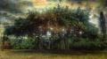 Drzewo Ludojad! Wytwór wyobraźni czy prawdziwy wróg? - drzewo ludojad;roślina mięsożerna;Madagaskar;diabeł z Brazylii;liany;macki;ośmionóg;Klaus von Schwimmer;wyprawa;dżungla;Afryka;Brazylia;narkotyczny sen;zmysły;umysł;pożeranie;duszenie;zapach;nęcący;słodki;wampir;wysysanie;opis;Harold T. Wilkins