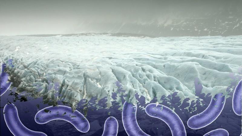 W lodzie zamrożone są patogeny (fot. youtube.com/screenshot)