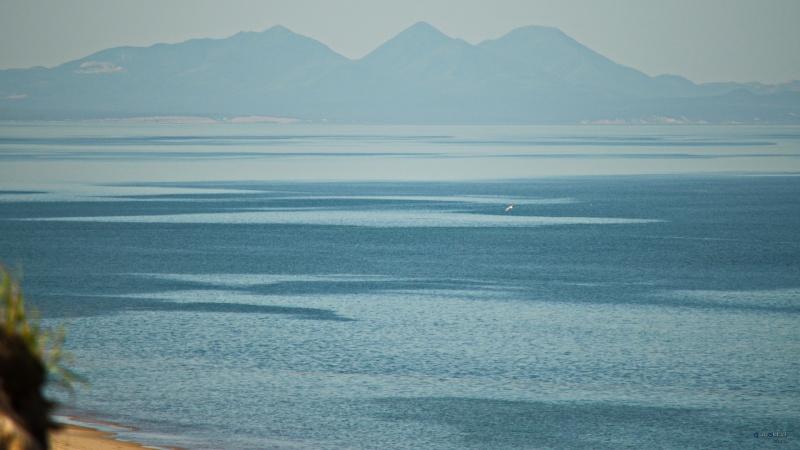 Wyspa Sachalin (źródło: www.publicdomainpictures.net)