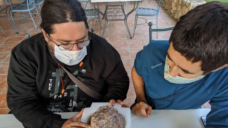 Badacze znaleźli skamieniałe jaja w Hiszpanii (fot. Twitter / Museo Cienc. Nat. UZ)