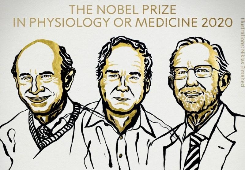 Laureaci w dziedzinie Medycyny - ilustracja (źródło: Niklas Elmehed/Twitter/Nobel Prize)