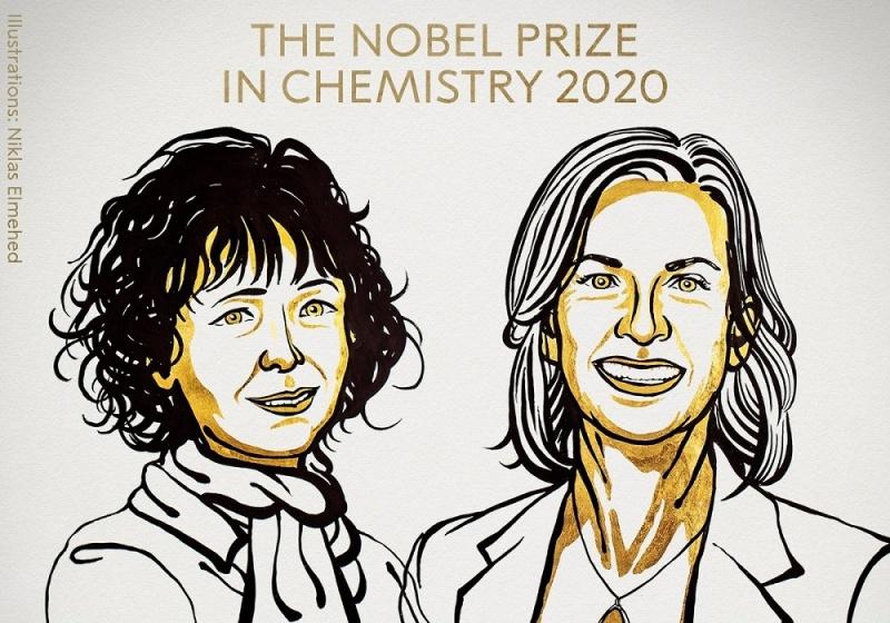 Laureatki w dziedzinie Chemii - ilustracja (źródło: Niklas Elmehed/Twitter/Nobel Prize)