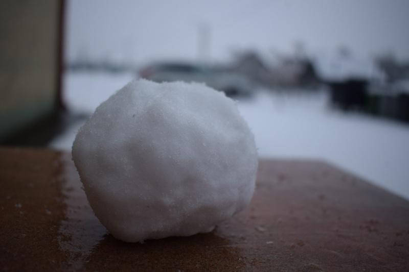 Pani Zima na Kujawach - kogo rzucić śnieżką? (fot. PJ)