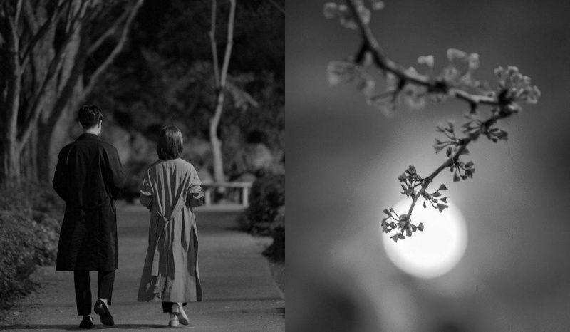 """Kadr z serialu """"One Spring Night"""" oraz wiosenny Księżyc (pixabay.com)"""