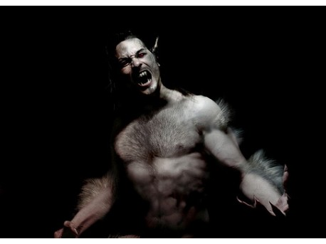 Wilkołak http://www.flickr.com/hathelion hathelion