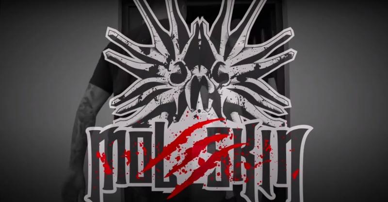 """Moleskin - """"Kolejne blizny"""" (źródło: youtube.com/screenshot)"""