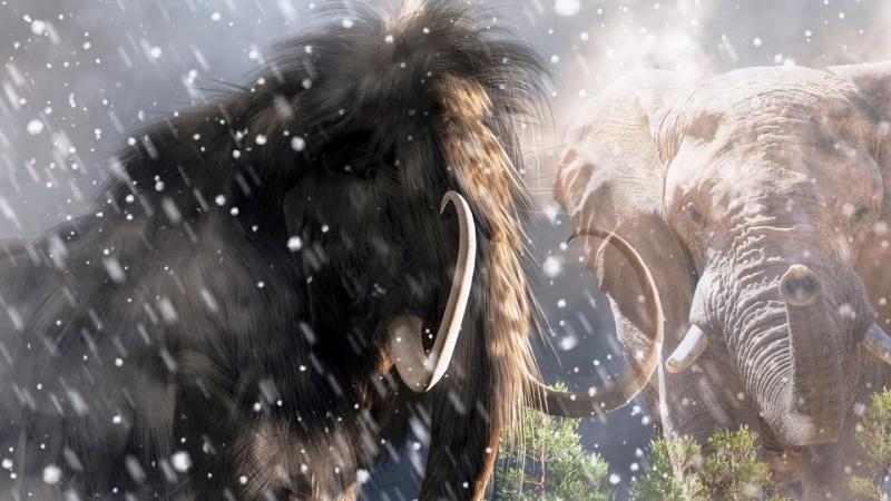 Mamut i słoń - ilustracja (źródło: youtube.com/screenshot)