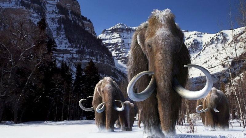Dostojne, potężne mamuty - ilustracja (źródło: youtube.com/screenshot)