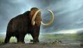 Nowe życie przodka słonia. Wskrzeszenie mamuta! - mamut;słoń indyjski;wskrzeszenie;firma Colossal;George Church;projekt;plan;etyka;genetyka;mamuciątko;embriony;krzyżówka genetyczna;biologia;zagrożone;wyginięcie;10 tysięcy lat temu;nowe życie