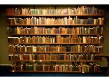 Światowy dzień książki we Włocławku - książka;święto;literatura
