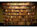 Światowy Dzień Książki we Włocławku - książka;święto;literatura;Światowy Dzień Książki