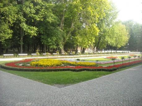 Dywan kwiatowy