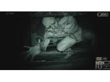 Straszna perspektywa - Outlast;survival horror;gra;recenzja;strach;FPP