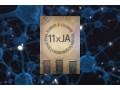 """""""11 x JA"""" – Moje życie z DID - Robert B. Oxnam;profesor;książka;recenzja;11xJA;autobiografia;osobowość mnoga;zaburzenie;dysocjacja;psychiatra;mózg;tajemnice"""