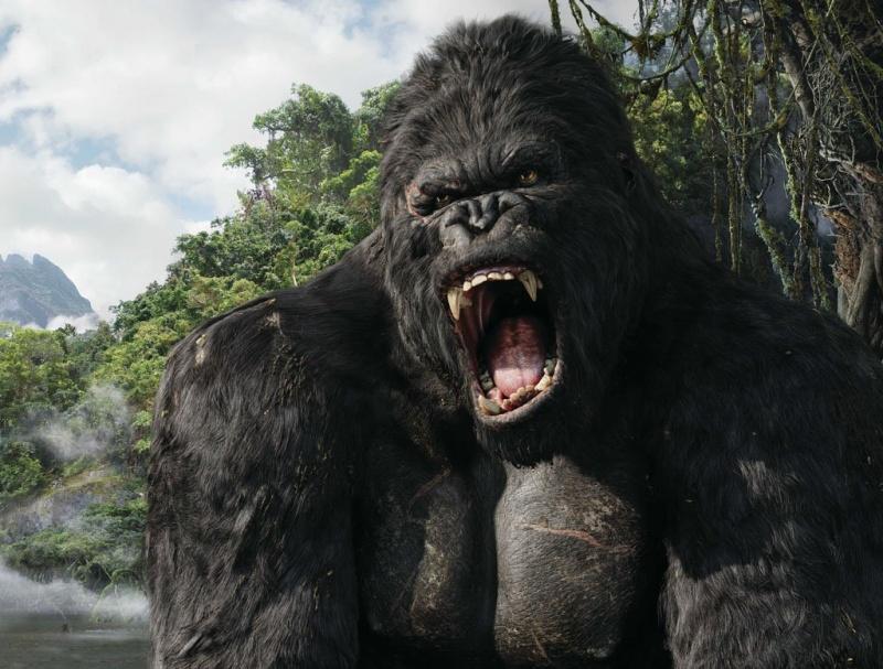 King Kong (źródło: źródło: www.wikia.com)