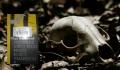 """""""Prowadź swój pług przez kości umarłych"""" – Starsza pani czuwa - recenzja;Prowadź swój pług przez kości umarłych;Olga Tokarczuk;ekologia;thriller;moralny;Janina Duszejko;sarny;myśliwi;polowanie;zwierzęta;las"""