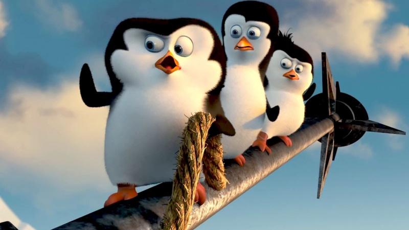 """Kadr z filmu """"Pingwiny z Madagaskaru"""" (źródło: youtube.com)"""