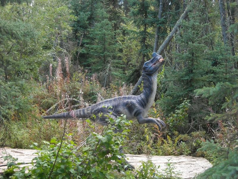 Welociraptor (fot. PJ)