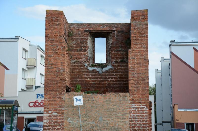 Zamek kapituły pomezańskiej - ruiny (fot. PaM)