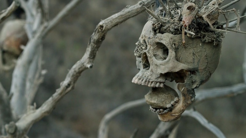 """Kadr z filmu """"Bone Tomahawk"""" (źródło: youtube.com)"""