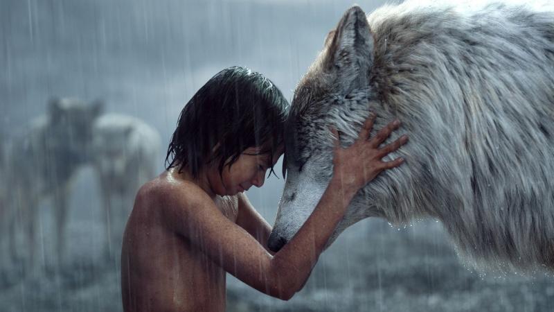"Kadr z filmu ""Księga dżungli"" https://wall.alphacoders.com"