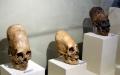 Czaszki z Paracas - czaszki;Paracas;wydłużone;badania;proszek;Ameryka Południowa;mutacja;DNA;Peru;lud;tajemnica;cywilizacja