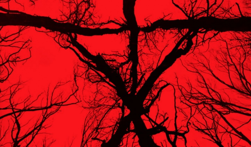 "Poster z filmu ""Blair Witch"" (źródło: youtube.com)"
