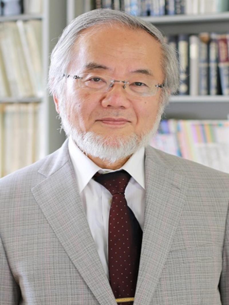 Yoshinori Ohsumi (źródło: wikimedia.org)