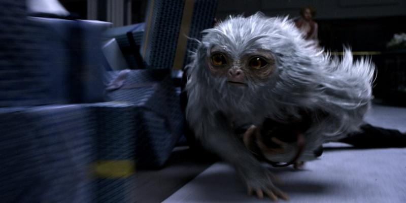 """Kadr z filmu """"Fantastyczne zwierzęta i jak je znaleźć"""" (źródło: youtube.com)"""