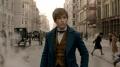 """""""Fantastyczne zwierzęta i jak je znaleźć"""" – Zoo Newta Scamandera - recenzja;Fantastyczne zwierzęta i jak je znaleźć;fantasy;przygodowy;J. K. Rowling;David Yates;Newt Scamander;Eddie Redmayne;mugole;czarodzieje;zwierzęta"""