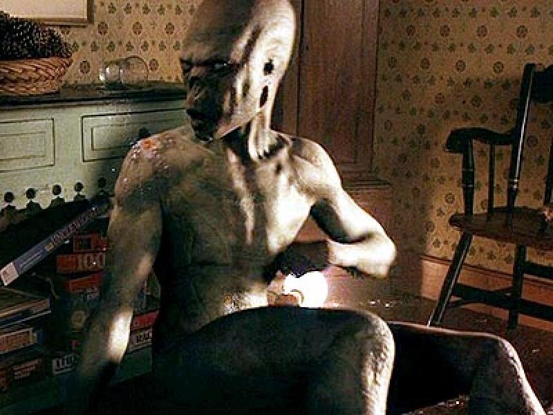 """Kadr z filmu """"Znaki"""" (źródło: aliens.wikia.com)"""