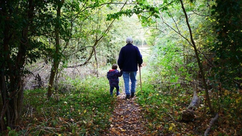 Dzień Dziadka (źródło: pxhere.com)