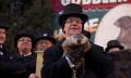Dzień Świstaka, czyli zimowe przepowiednie futerkowego Phila - Dzień Świstaka;Phil;gryzoń;świszcz;świstak;przepowiednia;dzień;zima;wróżbita;tradycja;Pensylwania;Bill Murray;Punxsutawney