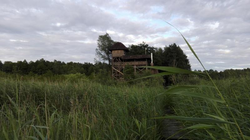 Dzień III - Wieża widokowa na jezioro Świdwie