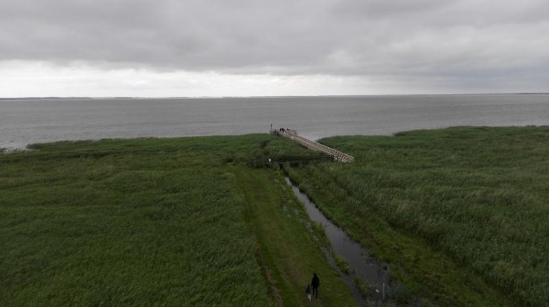 Dzień II - Widok na Jezioro Łebsko