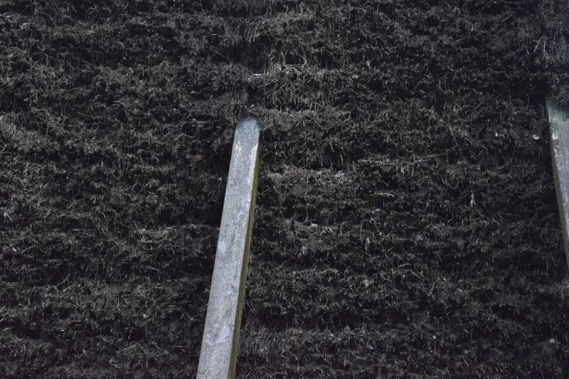Gałęzie tarniny służące do zwiększania stężenia soli w solance (fot. PJ)