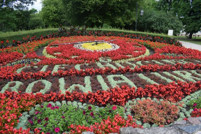 Zegar Kwiatowy (fot. PJ)