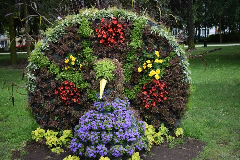 Paw z kwiatów (fot. PJ)