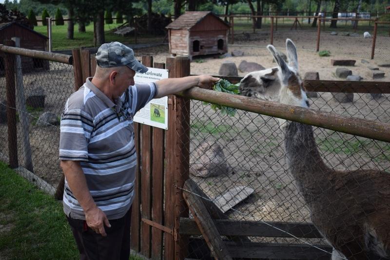 Mini Zoo w Goreniu Dużym - pan Wiesio karmi Elę (fot. PJ)